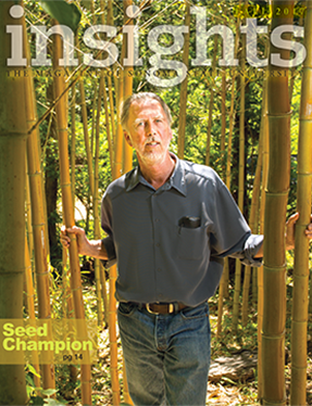 Insights fall 2017 cover